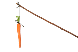 Carrot and stick reward and motivation