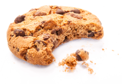 The BCF Group Cookie Policy